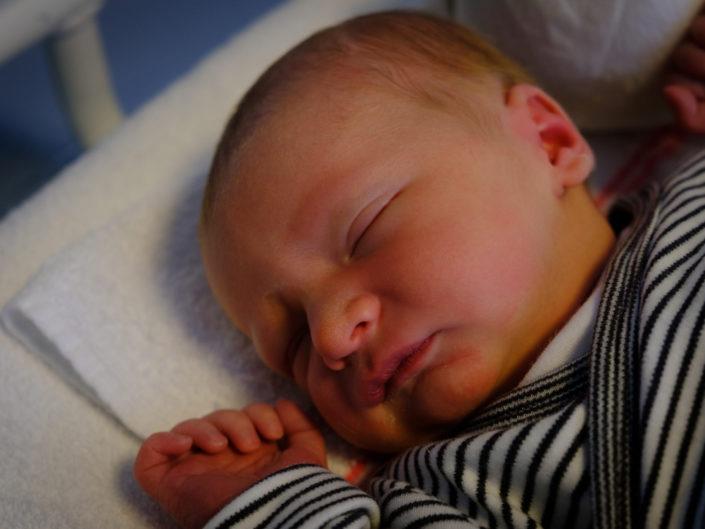 Geboorte Miel